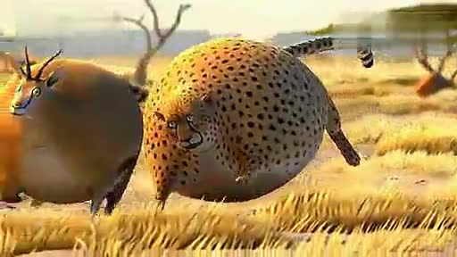 肥胖版国家地理杂志!超萌的豹子