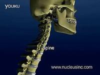 颈部疼痛颈椎解剖-游戏视频 热播_17173游戏视