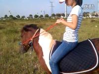 美女骑马10 游戏 视频片段