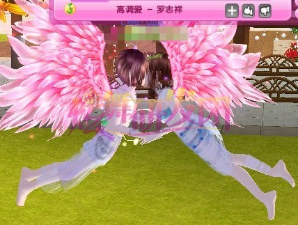 可以哦(⊙▽⊙好厉害的样子)   3、单个玩家拥有双/飞翅膀时飞行动