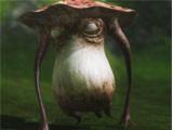 《最终幻想14》高清壁纸系列【可爱动物 三 】