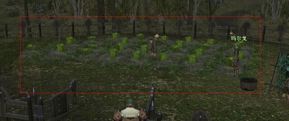 《最终幻想14》陆行鸟战斗任务详解