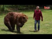 实拍美国驯熊师与灰熊v视频拥抱-现场视频舞蹈颂可爱中文图片