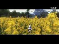 【清水音画】五毒三周年主题视频·五毒的心愿