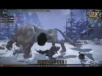 《怪物猎人OL》雪狮子王击杀视频