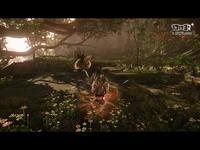 [怪物猎人OL]大剑、片手剑全新奥义独家演示视频
