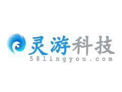 北京灵游网络科技有限公司